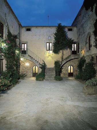 plants-in-the-courtyard-of-a-castle-sanluri-sardinia-italy
