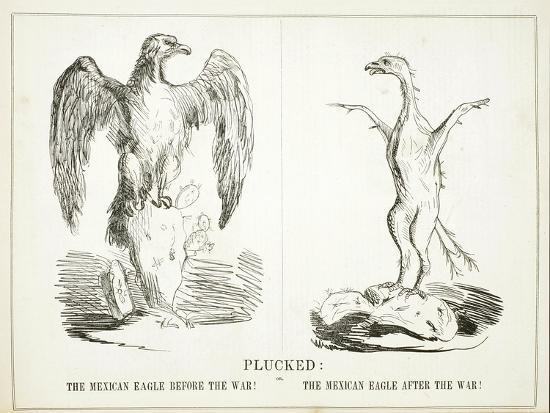 plucked-or-the-mexican-eagle-before-the-war-the-mexican-eagle-after-the-war-1847