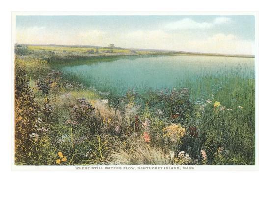 pond-and-wildflowers-nantucket-massachusetts