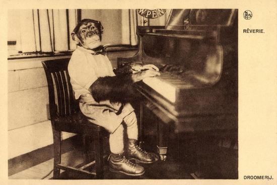 portrait-eines-schimpansen-der-klavier-spielt