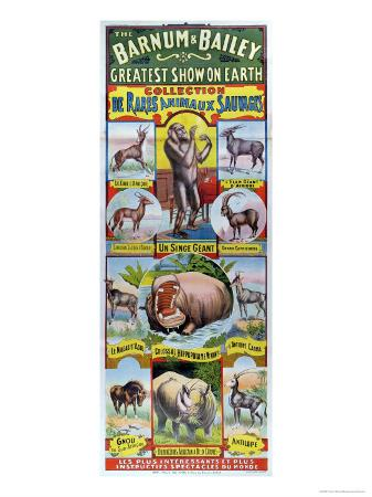 poster-advertising-the-collection-de-rares-animaux-sauvages-for-the-barnum-and-bailey-circus