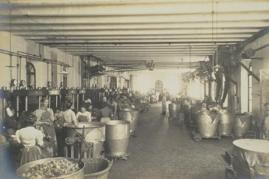 pressing-room-from-industrie-des-parfums-a-grasse-c-1900