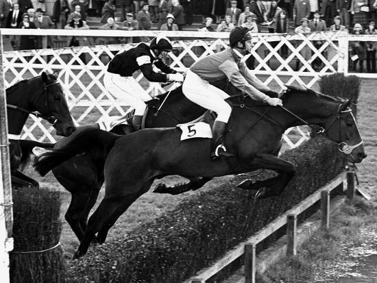 prince-charles-horseracing-january-1981-riding-allibar-at-ludlow-races