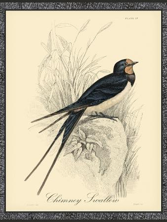 printed-chimney-swallow