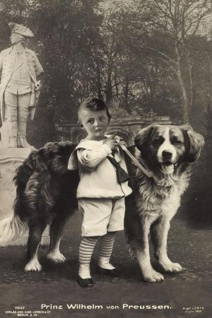prinz-wilhelm-von-preussen-mit-einem-bernhadiner-liersch-1947