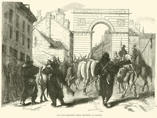 prussian-foraging-troop-bringing-in-cattle-october-1870