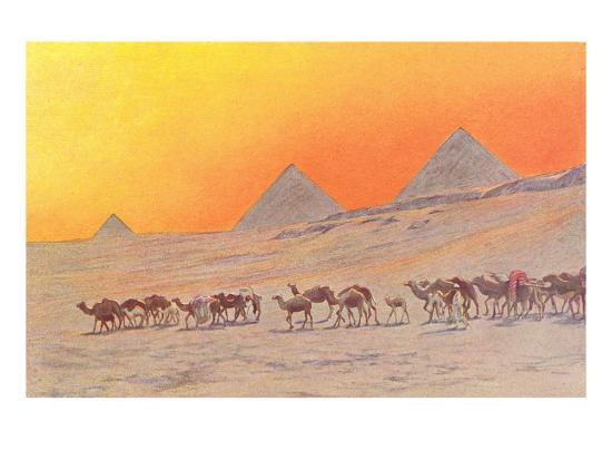 pyramids-camels-egypt