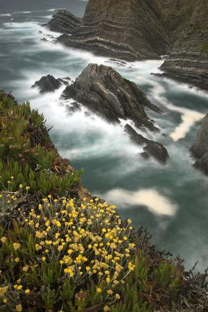 quinta-view-from-cliffs-cabo-sardao-cape-alentejo-south-west-alentejano-and-costa-vicentina-portugal