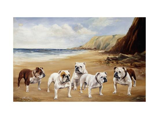 r-ward-binks-bulldogs-on-a-beach