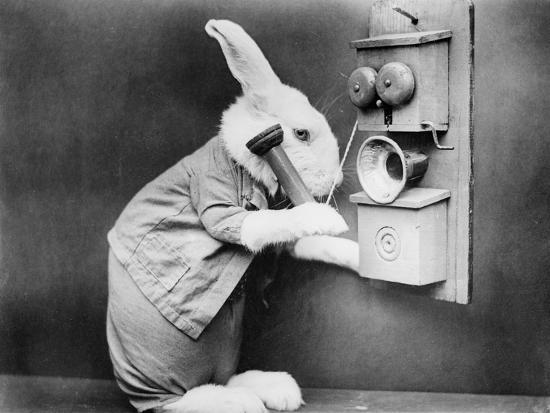 rabbiting-on-the-phone