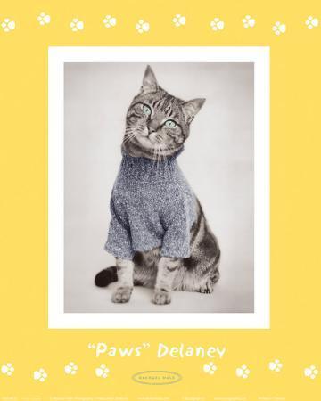 rachael-hale-paws-delaney