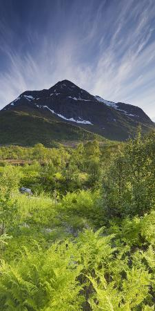 rainer-mirau-norway-northern-country-hinnoya-botntindan-fern