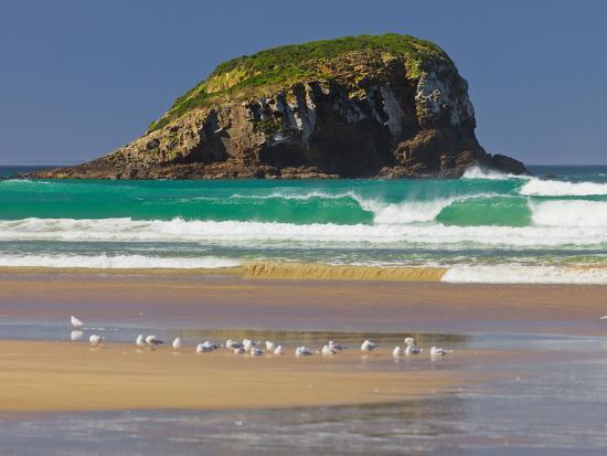 rainer-mirau-tautuku-bay-rocks-gulls-sandy-beach-catlins-otago-south-island-new-zealand