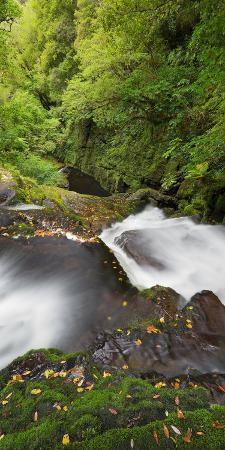 rainer-mirau-upper-mclean-falls-catlins-southland-south-island-new-zealand