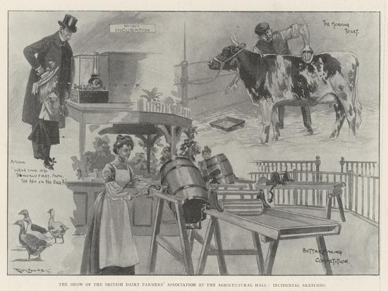 ralph-cleaver-the-show-of-the-british-dairy-farmers-association-at-the-agricultural-hall-incidental-sketches