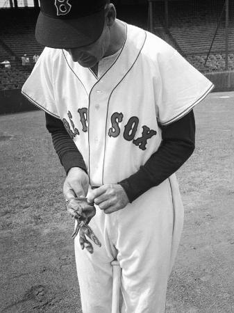 ralph-morse-ted-williams-putting-on-his-batting-gloves