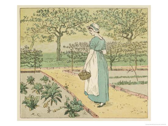 randolph-caldecott-girl-working-in-a-rural-kitchen-garden-collecting-cabbages
