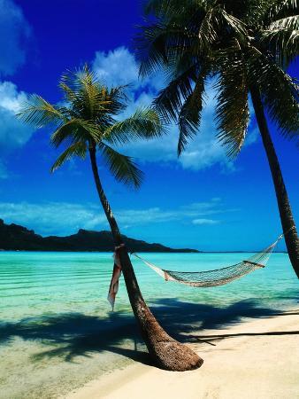 randy-faris-hammock-hanging-seaside