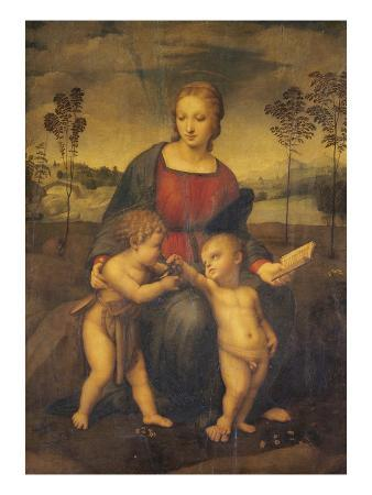 raphael-madonna-of-the-goldfinch