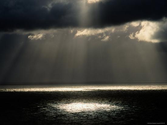 raymond-gehman-a-ray-of-sunlight-illuminates-a-patch-of-water