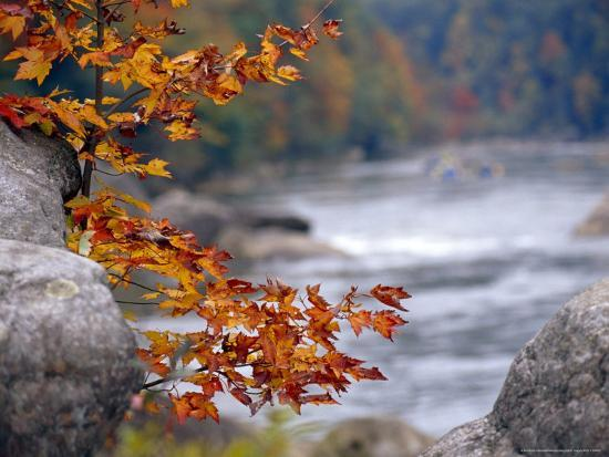 raymond-gehman-autumn-hues-and-large-boulders-along-the-gauley-river