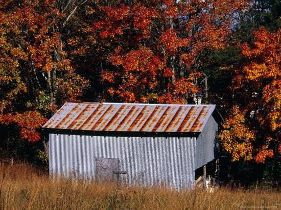 raymond-gehman-autumn-view-of-an-old-tin-barn-at-the-edge-of-the-woods