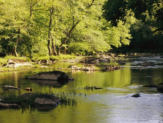 raymond-gehman-hardwood-forest-on-the-eno-river-in-spring