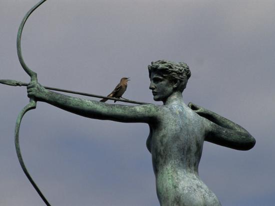 raymond-gehman-mockingbird-atop-a-bronze-sculpture-of-diana-by-augustus-saint-gaudens