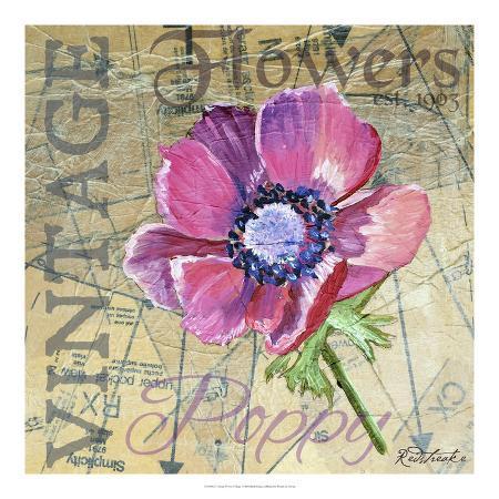 redstreake-vintage-flower-collage-i