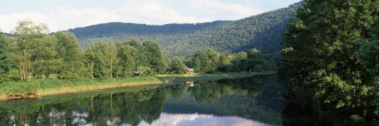 reflection-of-trees-in-a-river-delaware-river-delaware-county-new-york-state-usa