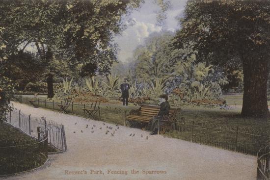 regent-s-park-feeding-the-sparrows