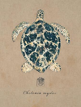 regina-andrew-design-vintage-linen-tortoise