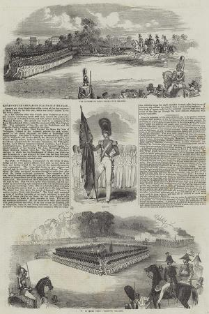 review-of-the-grenadier-guards-in-hyde-park