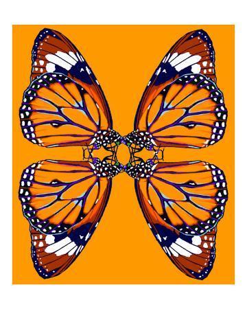 rhonda-watson-4-monarch-butterflies-in-orange