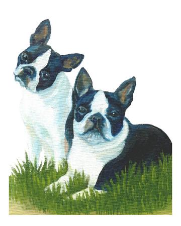 rhonda-watson-two-are-better-than-one-boston-terriers