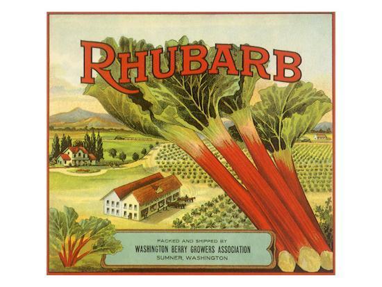 rhubarb-fruit-label