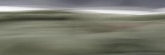 rica-belna-moved-landscape-6030