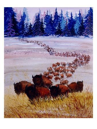 rich-lapenna-large-herd-of-bison-cross-a-vast-plain