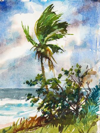 richard-a-rodgers-ocean-breeze