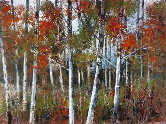 richard-akerman-silver-birches-iii