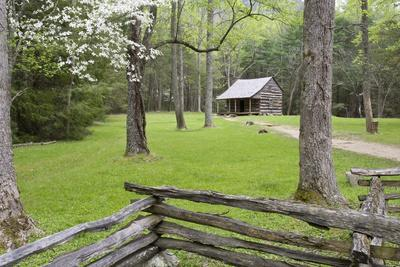 carter shields cabin in spring cades cove area great smoky mountains national park tennessee. Black Bedroom Furniture Sets. Home Design Ideas