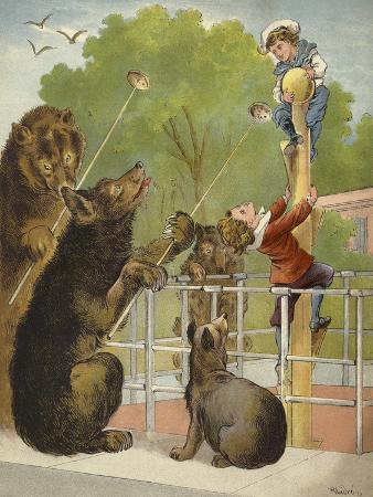 richard-andre-bears-baiting-boys