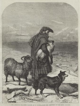 richard-ansdell-the-highland-shepherd