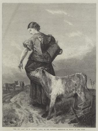 richard-ansdell-the-pet-calf
