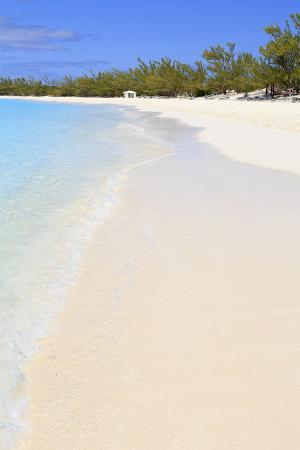 richard-cummins-half-moon-cay-little-san-salvador-island-bahamas-west-indies-central-america