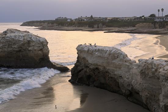 richard-cummins-natural-bridges-state-park-santa-cruz-california-united-states-of-america-north-america