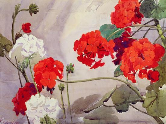 richard-e-clarke-red-and-white-geraniums