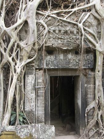 richard-maschmeyer-ta-prohm-angkor-archaeological-park-unesco-world-heritage-site-siem-reap-cambodia-indochina