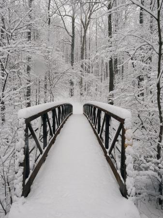 richard-nowitz-a-view-of-a-snow-covered-bridge-in-the-woods