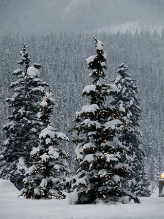 richard-nowitz-fresh-snowfall-at-the-chateau-lake-louise